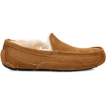 Image of UGG  ASCOT SUEDE